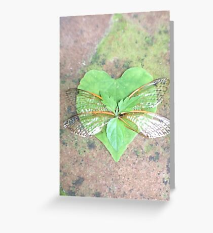 Enchanted Wings  Greeting Card