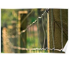 Sunny Fence Poster