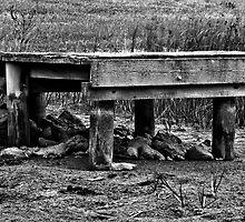 Empty - Belmont Geelong by Graeme Buckland