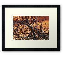 """""""Mornings Gift""""   Framed Print"""
