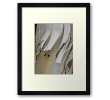 """""""Breaking out"""" Framed Print"""