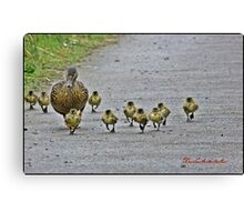""" Come along girls, keep up! Canvas Print"