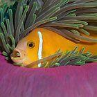 I like my anemone by Gorden