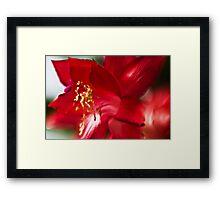 Red impression - Lensbaby macro Framed Print