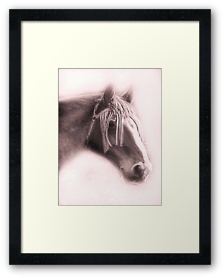 Beautiful Equine by Dawn B Davies-McIninch