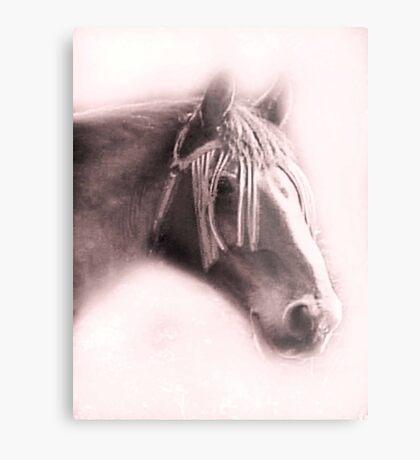 Beautiful Equine Metal Print