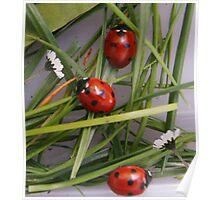 Ladybird Garden Poster
