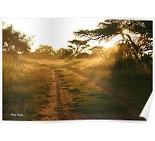 """African dust - at Dusk"" - Polokwane game reserve Poster"