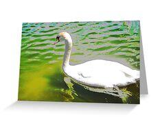 The swan and the aquamarine lake Greeting Card