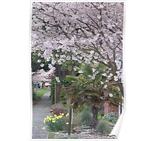 Spring in Crown Hill Poster