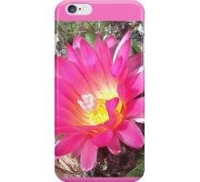 Lovely but Lonely cactus flower iPhone Case/Skin