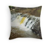 Mill River 2 Throw Pillow