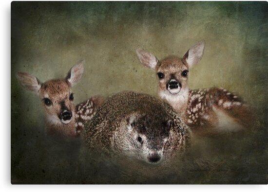 Peaceful Kingdom by Kay Kempton Raade