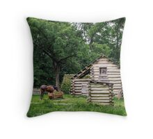 A horse in front of an old farm house Throw Pillow