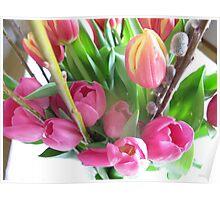 April tulips Poster