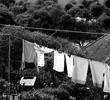 Washing by Clare Forder