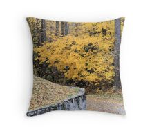 Fall in North Eastern Washington State Throw Pillow