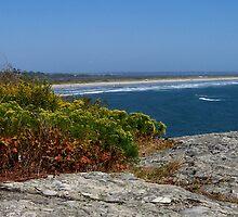 Atlantic Ocean from Purgatory Chasm by Nancy Richard