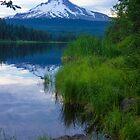 Mt Hood, Oregon by Kay Martin