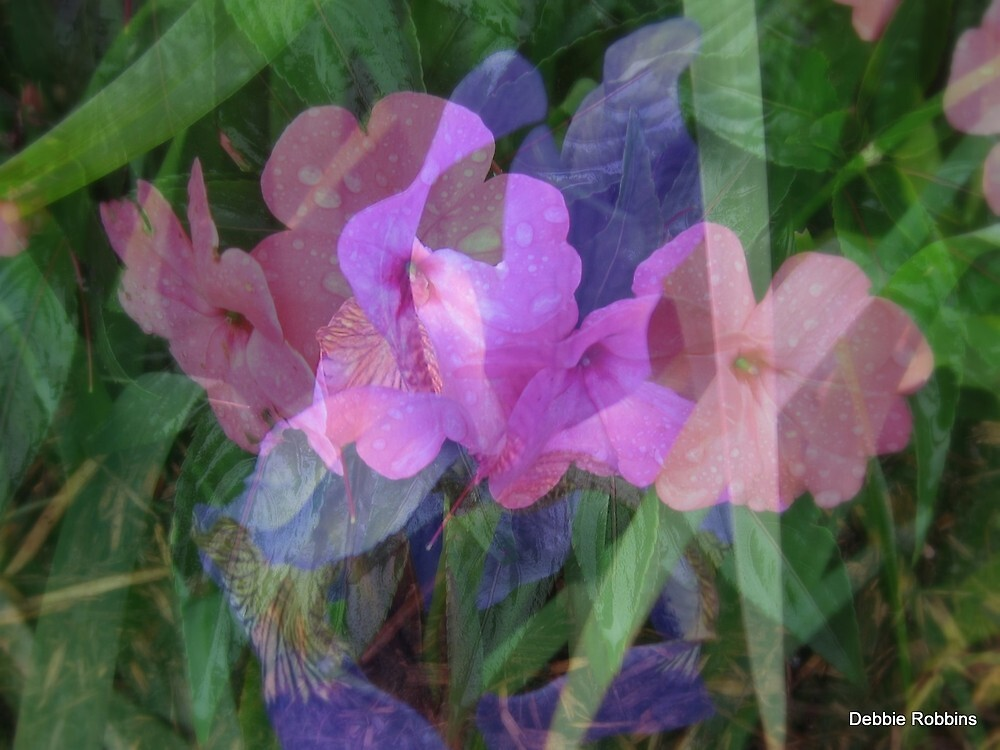 Soft Floral Beauty by Debbie Robbins