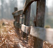 Fence by CJTill