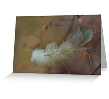 Feather Weight Greeting Card