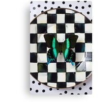 Butterfly on checker plate Canvas Print