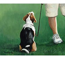 Beagle Sit Photographic Print