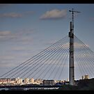 Belgrade Building bridges by Goran Zec