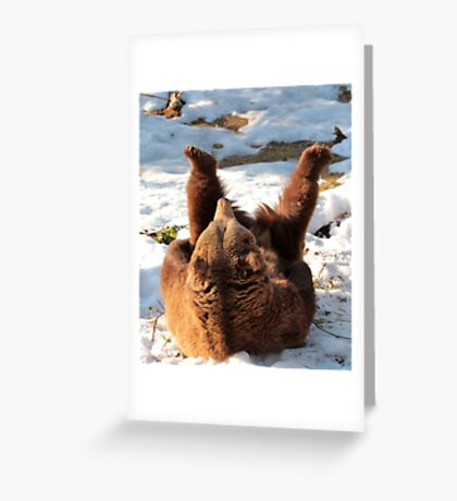 Brown bear - pilates in the snow Greeting Card