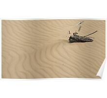 Drysdale sand sculpture Poster