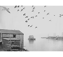 Peggy's Cove NS Photographic Print