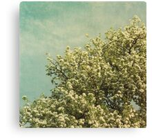 Resting under the prospering tree Canvas Print