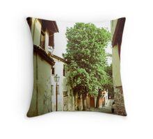 Old Town Throw Pillow