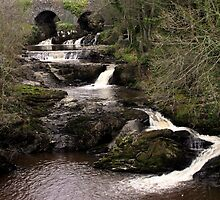 Mill River by Agnes McGuinness