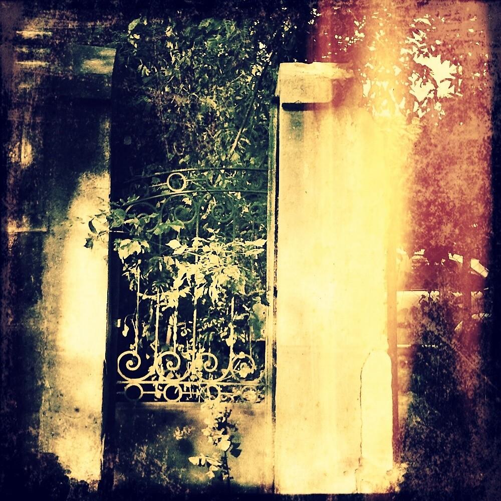 Heaven's Door by nicephore
