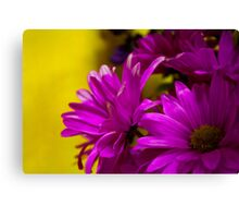 Beautiful Flowers of Ours Canvas Print