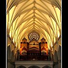 St. Joseph's Cathedral Choir Loft - Organ Pipes by Rose Santuci-Sofranko