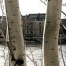 View of the Seine by Virginia Kelser Jones