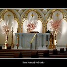 St. Joseph&#x27;s Cathedral - main altar by Rose Santuci-Sofranko