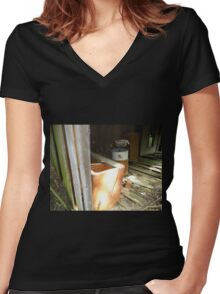 My Aunts Pride & Joy Women's Fitted V-Neck T-Shirt