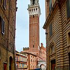 Rainy Tuscan street in Siena by InterfaceImages