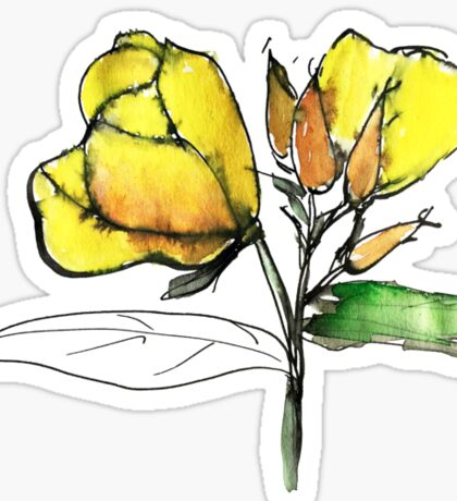 stylise quick watercolor sketch of Oenothera Sticker