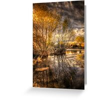 Tree to Tree Greeting Card