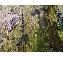 Love Endures All Photographic Print