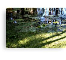 Water Carpet Canvas Print