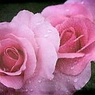 Raindrops on Roses ~ Yesterday&#x27;s Tears by SummerJade