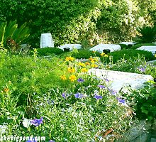 War Graves, Mount Herzl, Jerusalem (2) by Darren Stein