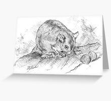 Possum Greeting Card