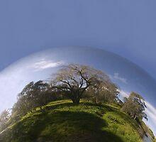 Sphere- Blue sky by Carly Haddad